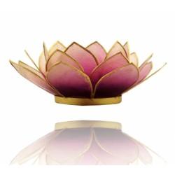 Lotos svícen Capiz fialovobílý se zlatavými lemy