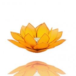 Lotos svícen Capiz žlutý se zlatavými lemy