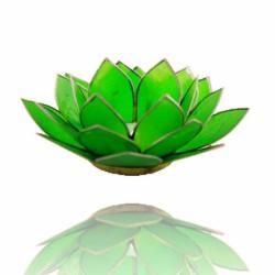 Lotos svícen Capiz zelený se stříbřitými lemy