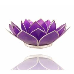 Lotos svícen Capiz fialový se stříbřitými lemy