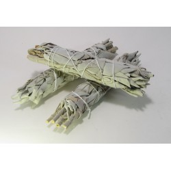 Šalvěj bílá - vykuřovadlo Salvia Apiana - svazek