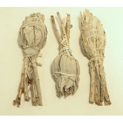 Šalvěj bílá - vykuřovadlo Salvia Apiana - svazek malý