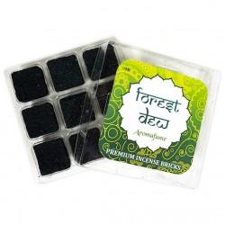 Parfémové čtverečky Aromafume Forest Dew