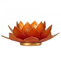 Lotos svícen Capiz růžovooranžový se zlatavými lemy