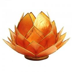 Lotos svícen Capiz vyšší oranžový se zlatavými lemy